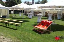 Sommerfest Rosendahl Nextrom